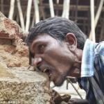 eating brick